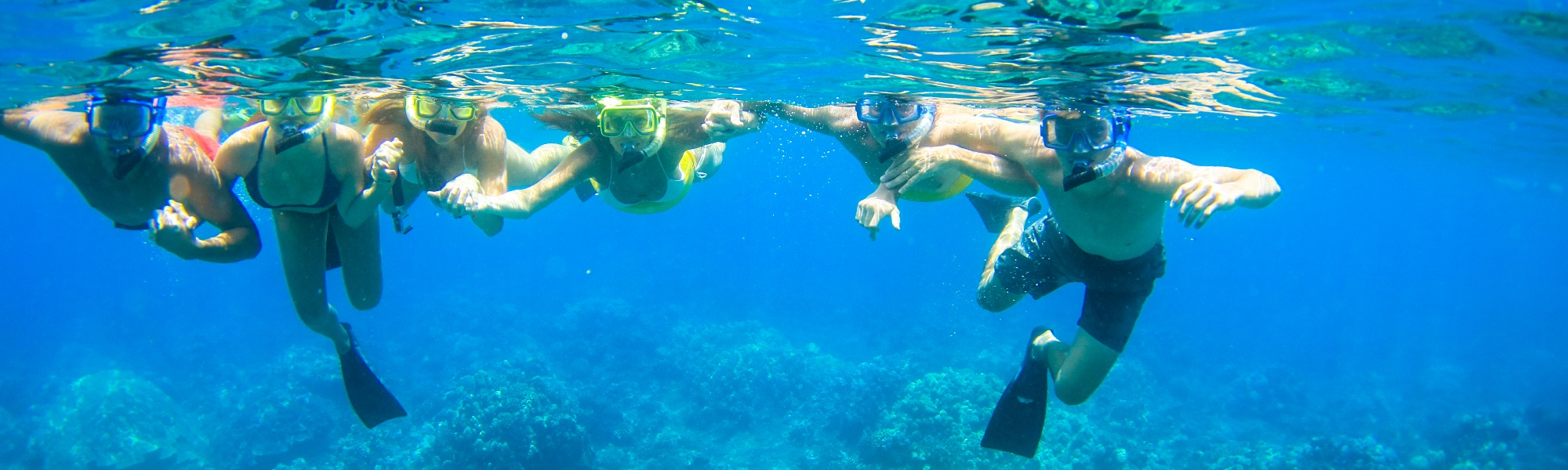 Teralani West Maui Snorkel Adventure